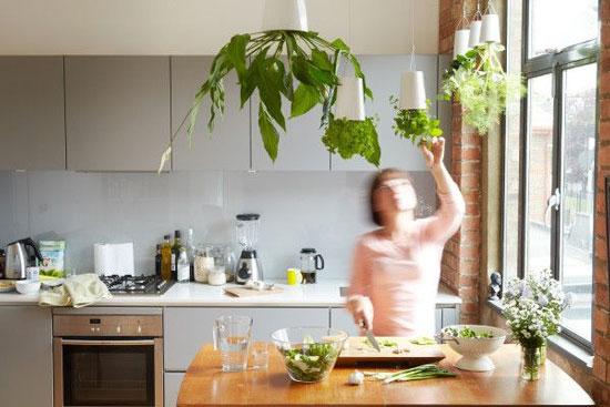 Green-Kitchen jpg